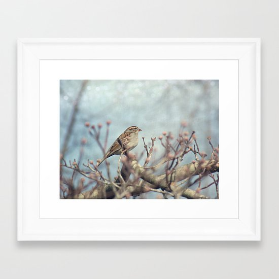 Sparrow in Winter II Framed Art Print
