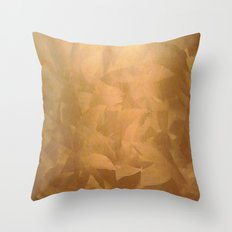 Pretty Copper cases Throw Pillow