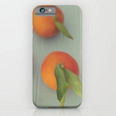Orange Delight iPhone 6 Slim Case