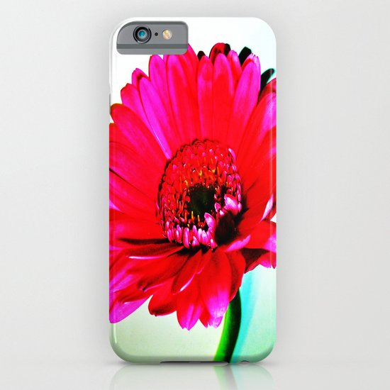 Gerbera iPhone & iPod Case