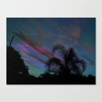 Palm Sun Down Canvas Print
