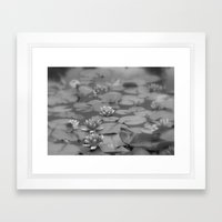 Calm Framed Art Print