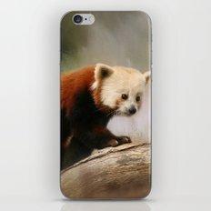 The Panda Red iPhone & iPod Skin