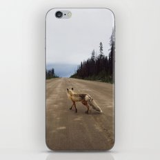 Road Fox iPhone & iPod Skin