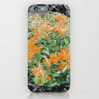 High Line Sunshine iPhone 6 Slim Case