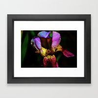 Fire From Within Framed Art Print