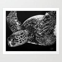 Beneath the Waves the Sea Turtle Swims Art Print
