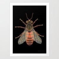 Bee (Abeille) Art Print