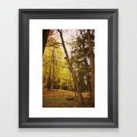 The Last Days of Grace Framed Art Print