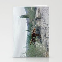 Mexican Horse Hide Stationery Cards