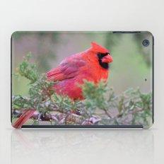 Spring Cardinal iPad Case