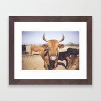 On the Farm  Framed Art Print