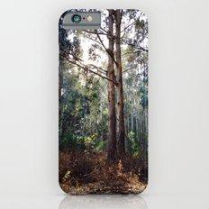 Presidio of San Francisco Slim Case iPhone 6s