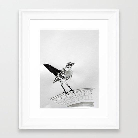 Birdie Framed Art Print