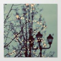 Winter Lights Canvas Print