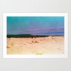 Dreamy Dead Sea III Art Print