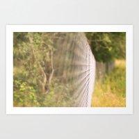 Field Fence Art Print