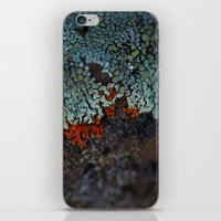 Lichen Ice iPhone & iPod Skin