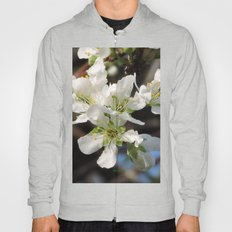 Plum Blossoms Hoody