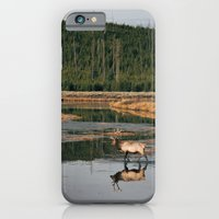 Bull Elk Crossing a River in Yellowstone iPhone 6 Slim Case