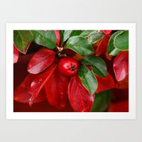 Red and green with berry Art Print