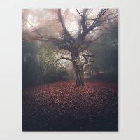 A Gentle November Canvas Print