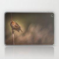 Red-winged Blackbird Laptop & iPad Skin