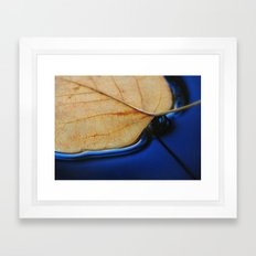 Leaf Framed Art Print