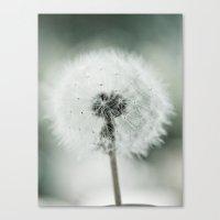 Soft End Canvas Print