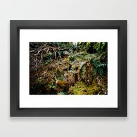 Fernite Framed Art Print