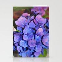 Hydrangea Stationery Cards