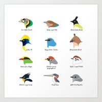 Montane Birds Series 1 Art Print