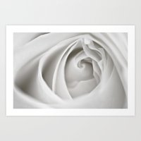 White Rose 9463 Art Print