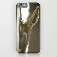 the Morning's Bath iPhone 6 Slim Case
