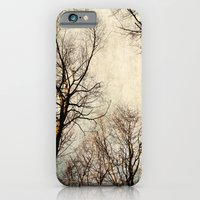 Paint The Sky With Branc… iPhone 6 Slim Case