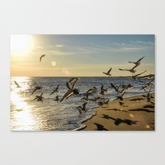 Birds in Flight Canvas Print