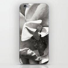 Black & White Rose iPhone & iPod Skin