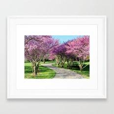 drive-way Framed Art Print