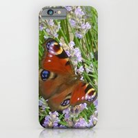 Peacock Butterfly iPhone 6 Slim Case