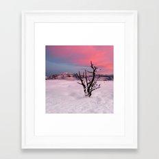 Sunrise in Yellowstone National Park Framed Art Print