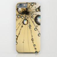 Single Dandy Seed Web Drops iPhone 6 Slim Case