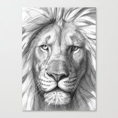 Lion G106 Canvas Print