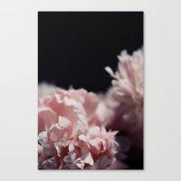 Perennial Canvas Print