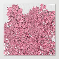 Pink Pod Flower Canvas Print