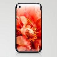 Big Bang ~ Color Version iPhone & iPod Skin