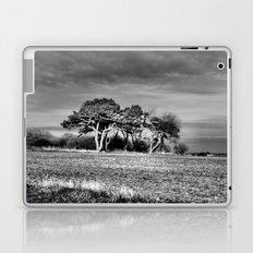 3 Trees Laptop & iPad Skin