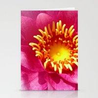 Water Lily Macro Stationery Cards