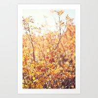 Yellow Fall Leaves Art Print