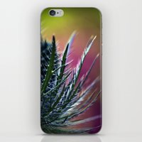 Colorful beauty iPhone & iPod Skin