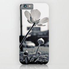 Roadside beauty iPhone 6s Slim Case